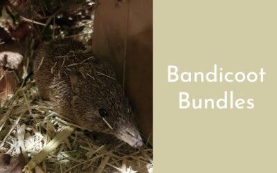 Bandicoot Bundles